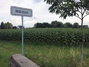 IMG_1937 Moetzlich